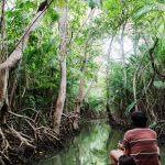 Descubra a Ilha de Marajó, 3 dias