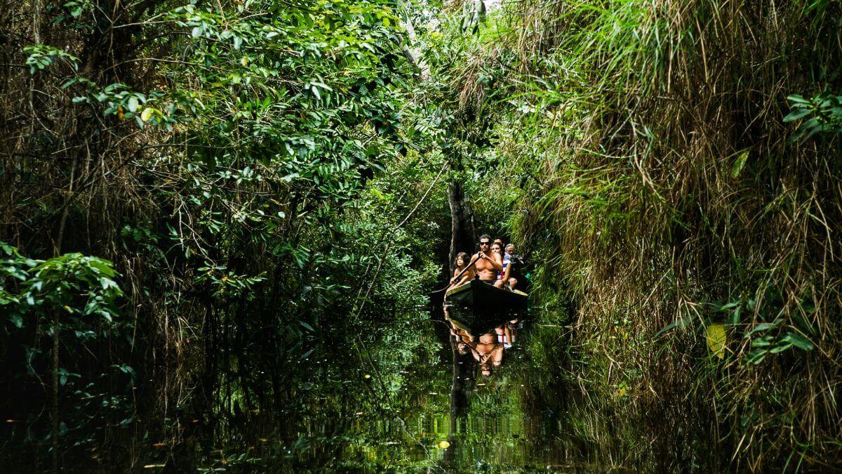 Floresta Encantada em Alter do Chão. Foto: Priscila Olandim.